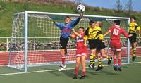 Fotbalová branková síť